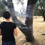 L'artiste de animation Land Art aNa Fernandes sur le terrain dans une paysage de la région de l'Alenteijo Au center du Portugal en train de peindre son support transparent tendu