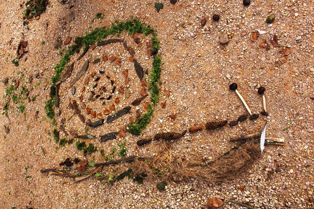 Exemple d'une œuvre d'art écologique qui représente un escargot dessiné au sol avec des végétaux et minéraux ramassés et organisés lors d'une animation Land Art